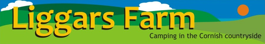 Liggars Farm - Camping and caravnning in the Cornish Countryside